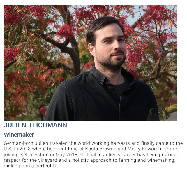 Julien Teichmann bio